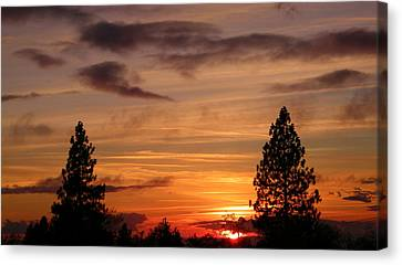 Twin Pines Canvas Print