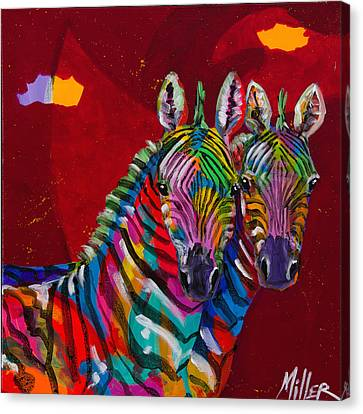 Twin Zebras Canvas Print by Tracy Miller