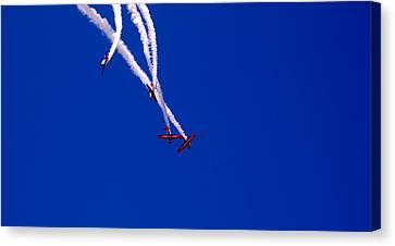 Twist And Turns Canvas Print