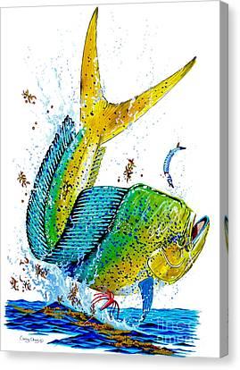Ballyhoo Canvas Print - Twisted Mahi by Carey Chen