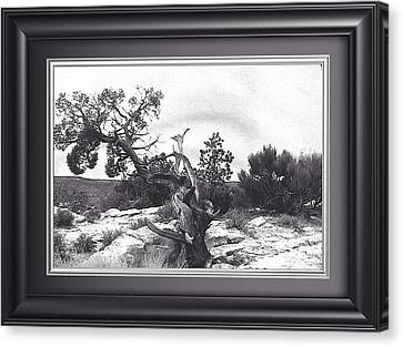 Twisted. Natures Prank Canvas Print