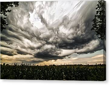 Twisted Sky Canvas Print
