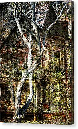 Twisted Tree Overlay Canvas Print by Marty Koch