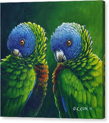 Two - St Lucia Parrots Canvas Print by Christopher Cox