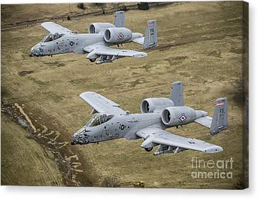 Razorbacks Canvas Print - Two A-10 Thunderbolt IIs Conduct by Stocktrek Images