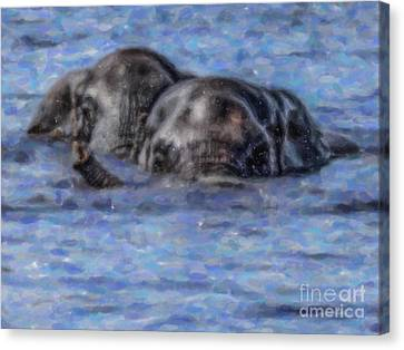 Two African Elephants Swimming In The Chobe River Canvas Print by Liz Leyden