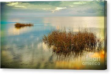 Two Alone In Pamlico Sound II Canvas Print by Dan Carmichael