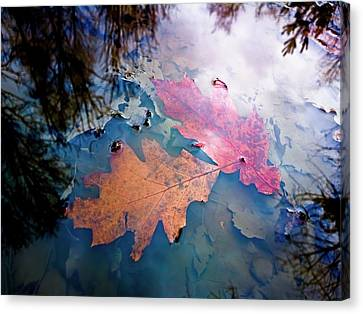 Two Autumn Leaves Canvas Print by Milan Surkala