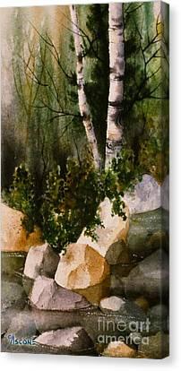 Two Birch By Rocky Stream Canvas Print