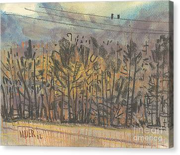 Two Birds On A Wire Canvas Print by Donald Maier