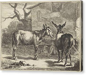 Two Donkeys In A Manger, Jan De Visscher Canvas Print by Jan De Visscher And Nicolaes Pietersz. Berchem
