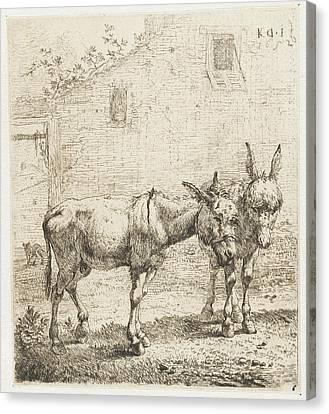 Two Donkeys, Karel Dujardin Canvas Print by Karel Dujardin