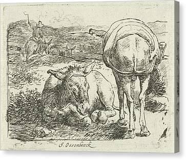 Two Donkeys, Print Maker Jan Van Ossenbeeck Canvas Print by Jan Van Ossenbeeck