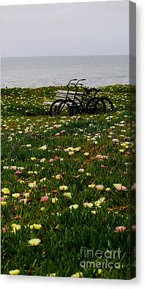 Canvas Print featuring the photograph Two For The Road 2 by Theresa Ramos-DuVon