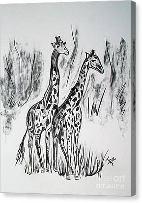 Canvas Print featuring the drawing Two Giraffe's In Graphite by Janice Rae Pariza