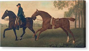 Two Hacks Canvas Print by George Stubbs