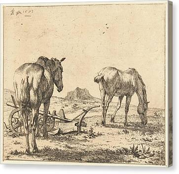 Two Horses And A Plow, Karel Dujardin Canvas Print