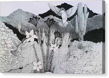 Two Hummingbirds In Arizona Canvas Print