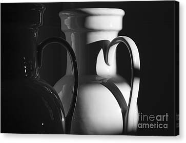 Two In Black And White Canvas Print by Terry Rowe
