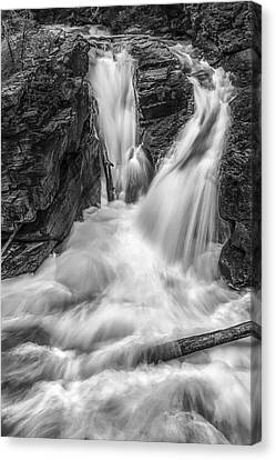 Two Into One Canvas Print by Jon Glaser
