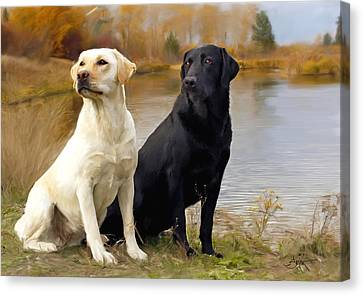 Hound Canvas Print - Two Labs by Robert Smith