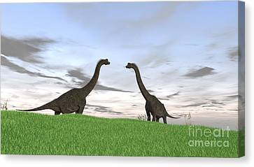 Two Large Brachiosaurus In A Grassy Canvas Print