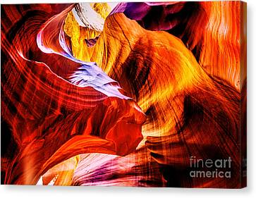 Two Lions Dance Canvas Print