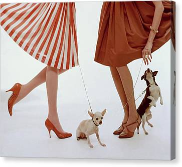 Brown Canvas Print - Two Models With Dogs by William Bell