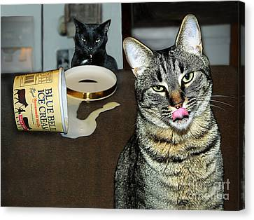 Two Naughty Cats Canvas Print