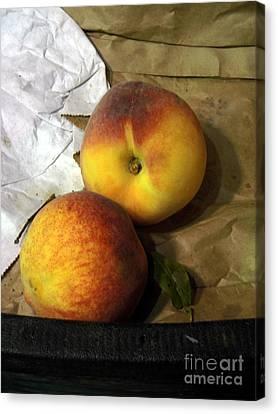 Two Peaches Canvas Print by Miriam Danar