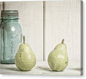 Two Pear Still Life Canvas Print