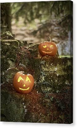 Two Pumpkins Canvas Print by Amanda Elwell