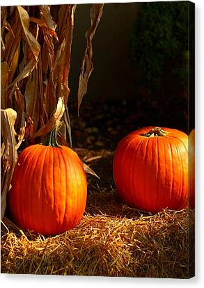 Two Pumpkins Canvas Print by Yvette Radcliffe