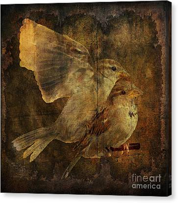 Two Sparrows Canvas Print by Jim Wright