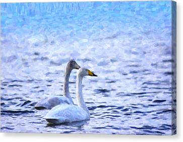 Two Swans Swimming Canvas Print by Tommytechno Sweden