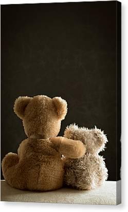 Two Teddy Bears Canvas Print