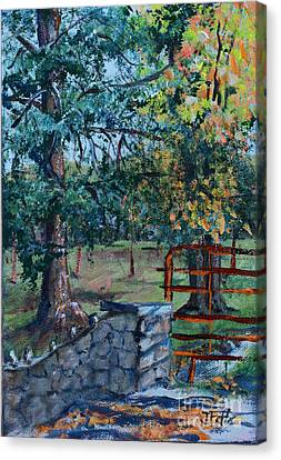 Two Trees And A Gate Canvas Print by Janet Felts