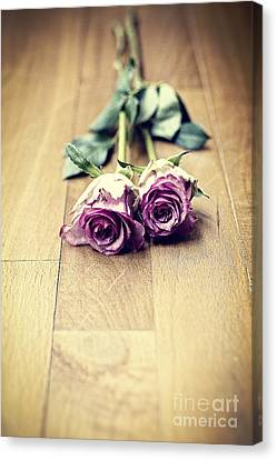 Country Magazine Decor Canvas Print - Two Violet Roses by Ivy Ho