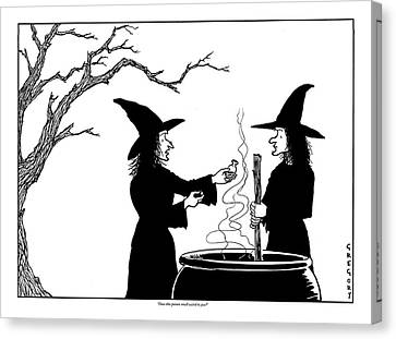 Two Witches: One Stirring A Cauldron Canvas Print