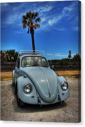 Tybee Island Beach Bug 002 Canvas Print by Lance Vaughn
