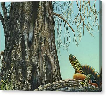 Tyler And The Tree Canvas Print