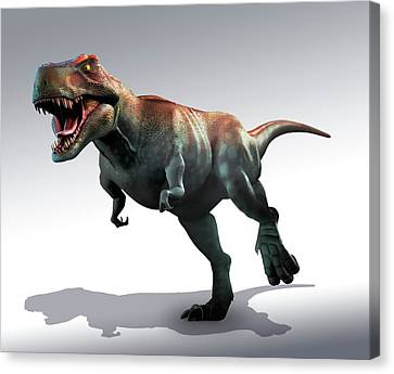 Tyrannosaurus Rex Artwork Canvas Print by Mark Garlick