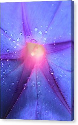 Ultimate Power Canvas Print by The Art Of Marilyn Ridoutt-Greene