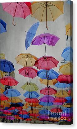 Umbrellas Canvas Print by Jelena Jovanovic