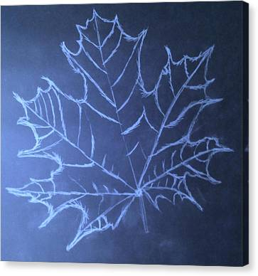 Canvas Print featuring the drawing Uncertaintys Leaf by Jason Padgett