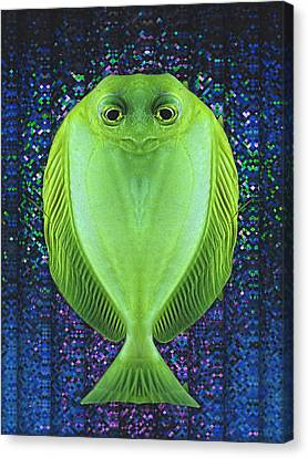 Uncle Fish Drops By For Dinner Canvas Print by Wendy J St Christopher