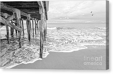 Under The Boardwalk Black And White Canvas Print by Edward Fielding