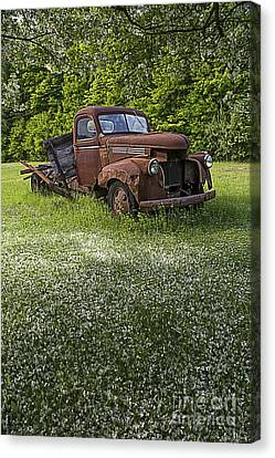 Forlorn Canvas Print - Under The Crab Apple Tree by Edward Fielding