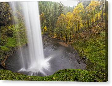 Under The Falls With Autumn Colors In Oregon Canvas Print by David Gn