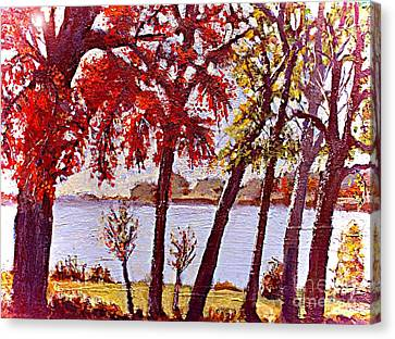 Under The Maple Along The Charles River Canvas Print by Rita Brown